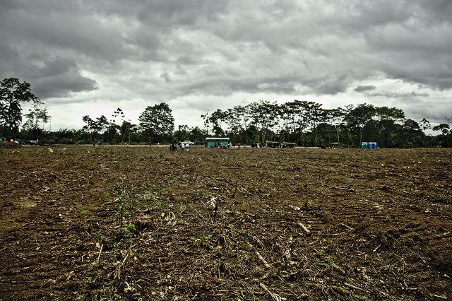 Aunque la ZVTN de Tumaco es de fácil accesibilidad, al momento de llegar la insurgencia, el pasado 30 enero, el sitio solo contaba con cuatro baños portátiles para más de 300 personas y un terreno desolado. Hoy las construcciones avanzan despacio. Foto: Andrés Gómez.